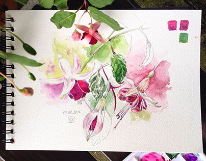 Floral sketches 2016