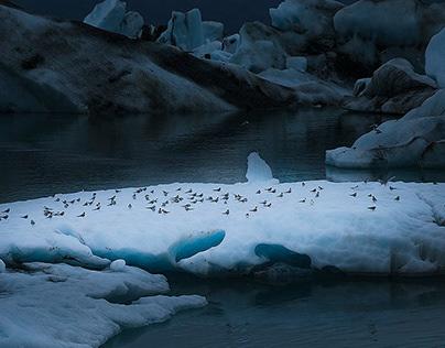 Jokulsarlon. Fine art projet about Iceland lagoon.