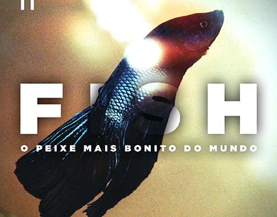 Fish, O peixe mais bonito do mundo