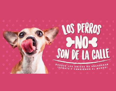 Mall Portal Chile - Los Perros No son de la Calle