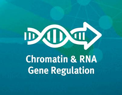 WEIZMANN for iCORE - Chromatin & RNA Gene Regulation