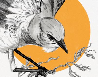 Cenzontle ave de las 400 voces