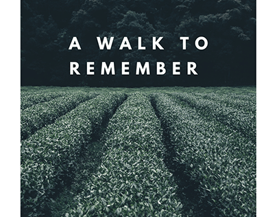 A walk to remember- Blogpost