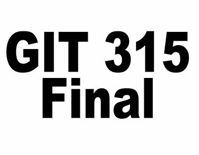 Millett_Final GIT 315