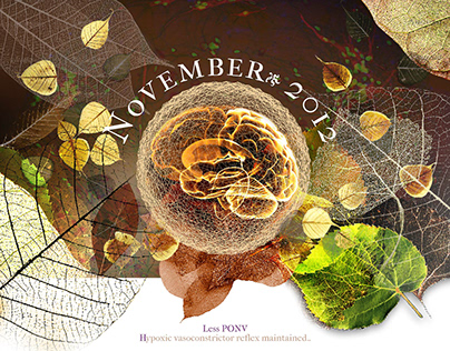 Calendar 2012 for TIVA-TCI enthusiasts