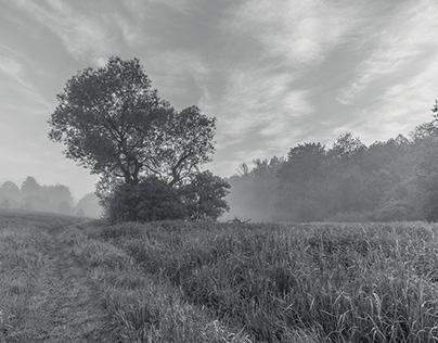 Landscapes B&W