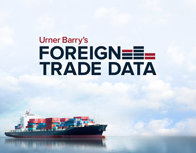 Foreign Trade Data Logo and Identity