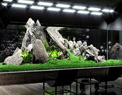 Aquascaping | interior design project