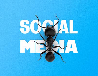 Social Media   Dteca