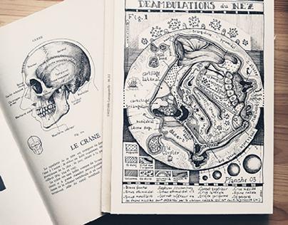Mix cartographie et anatomie