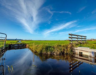 Veenweidevisie | Provincie Fryslân