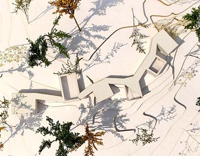 Proyecto Lugar - Habitando el paisaje natural - 20201