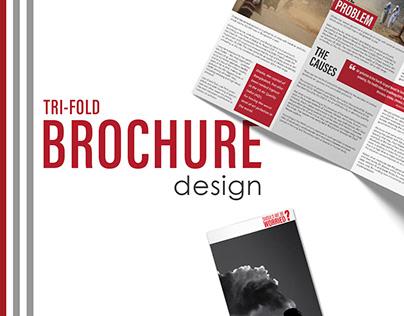 Tri-fold Brochure Design   Air Pollution