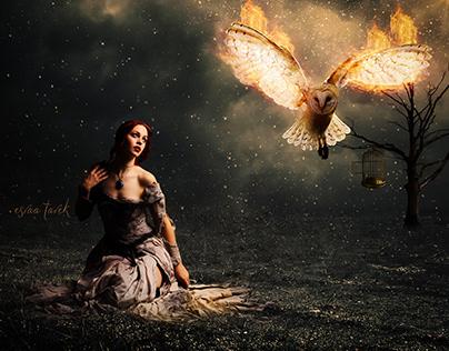 new manipulation burning owl