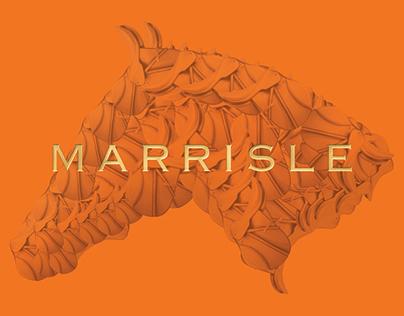 Marrisle Hotel & Spa
