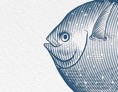 Round Fishes - Illustration