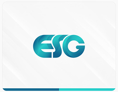 Visual Identity Expert Systems Group - Turkey