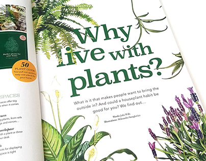 Botanical Illustrations | Living with Plants Magazine