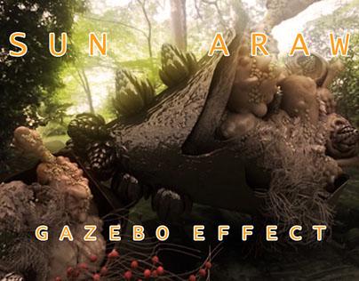 Sun Araw - Gazebo effect.