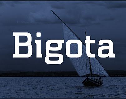 Bigota