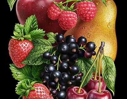 Fruit illustrations.