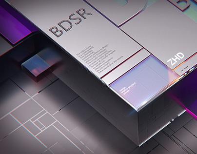 BDSR 2021 courses