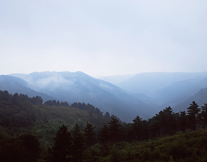 Morning mist in the mountain