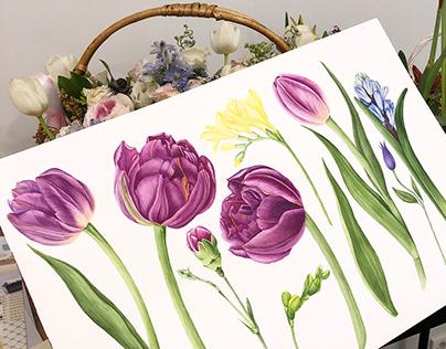 Watercolor Spring Garden Clipart