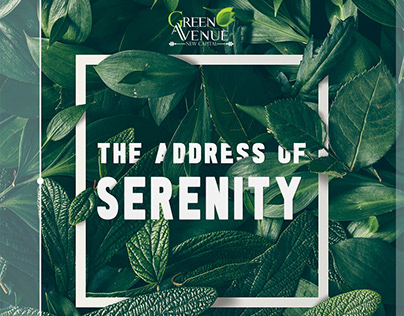 Green Avenue The Address Of Serenity
