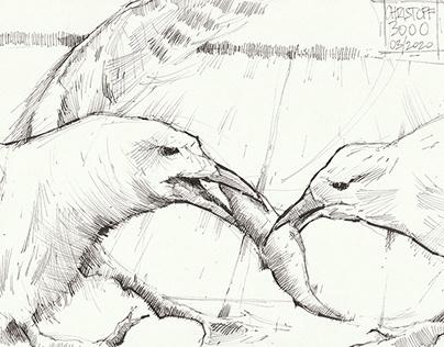 Herd Immunity #1 - Ink Drawing