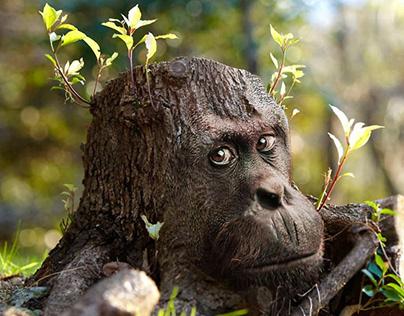 Funny Photo Manipulation Gorilla