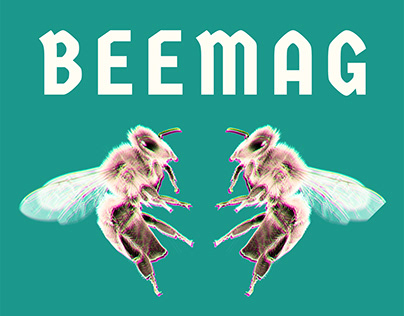 BEEMAG Magazine design