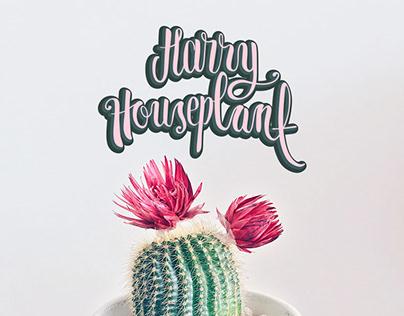 Harry Houseplant . Logo Design