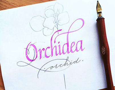 Calligraphy name of flowers in Italian