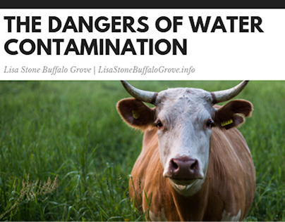 The Dangers of Water Contamination