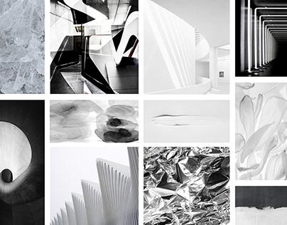 Proyecto Alexander Wang Estudio 2