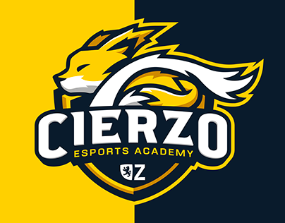 Cierzo Esports Academy