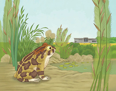Vincent the leopard toad for Jacana