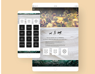Laura De La Chica | Brand y Diseño Web