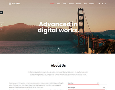 Angora - Responsive One Page Parallax WordPress Theme