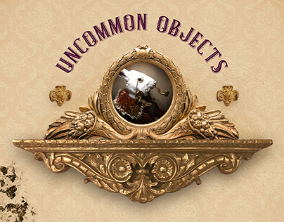 Uncommon Objects Website