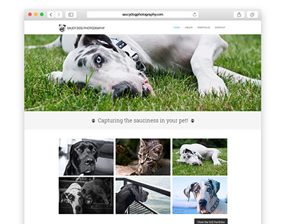 Saucy Dog Photography Website