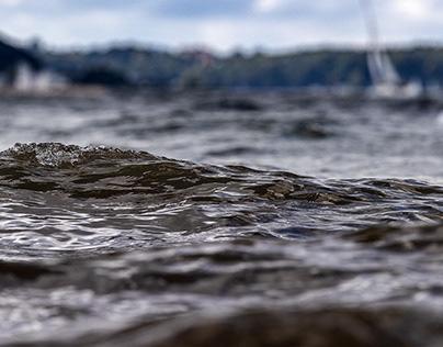 Baltic (IV)