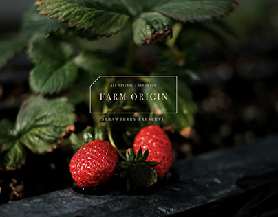 Farm Origin | Branding & Packaging