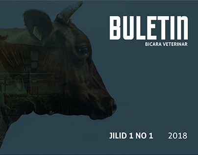 BULETIN JPV VOL.01