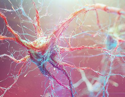 Neural Pathways (Stills from movie)