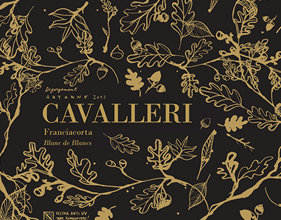 ILLUSTRATED PAPER for Franciacorta