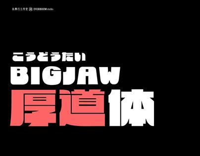 厚道體:可愛敦厚又復古的中日文字型提案|BigJaw: Cute, retro and energetic