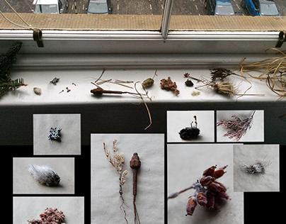 Why Wetlands? - Artist Presentation