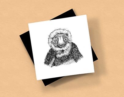 50 days analogue illustration challenge